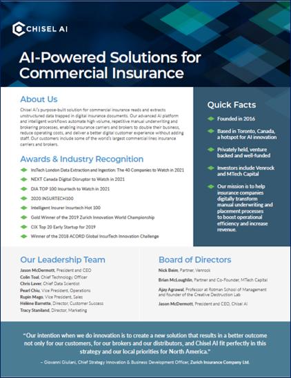 Chisel AI Corporate Fact Sheet